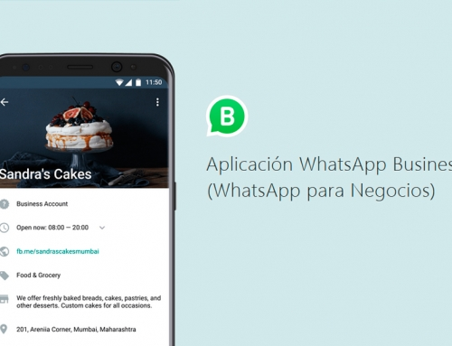 WhatsApp Business ya disponible en España